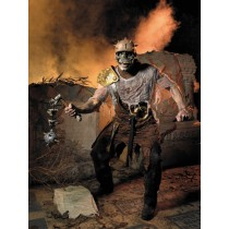 WARRIOR LORD COSTUME ADULT