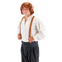 BILBO BAGGINS ADULT WIG WITH