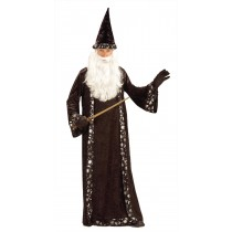 WIZARD HAT AND ROBE