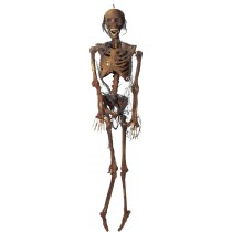 ROTTED CORPSE 6 FT