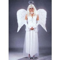 ANGEL WINGS FEATHR ADLT WHT