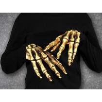 HANDS BONES