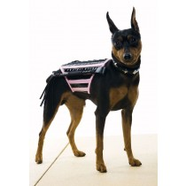 DOGINATRIX PK-BK DOG COSTUM SM