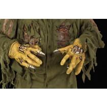 JASON HANDS