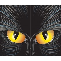 CATRAGEOUS CAT EYES