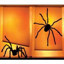 SHADY SPIDERS WOW WINDOWS